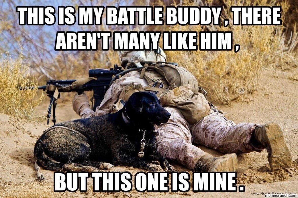 battle buddy